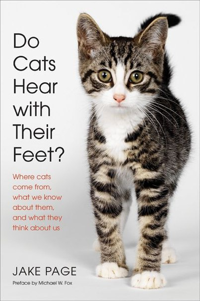 Do Cats Hear with Their Feet Where Cats Come From, What We Know About Them, and What They Think About Us