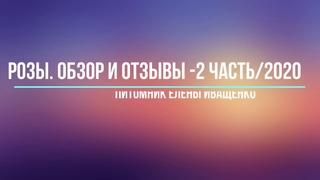 Часть 2/2020. Обзор и Отзывы о Розах Елены Иващенко.