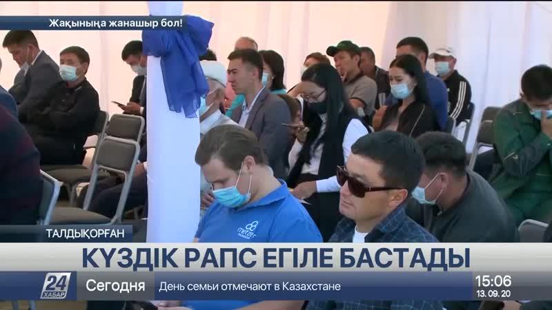 Алматы облысында күздік рапс егіле бастады.