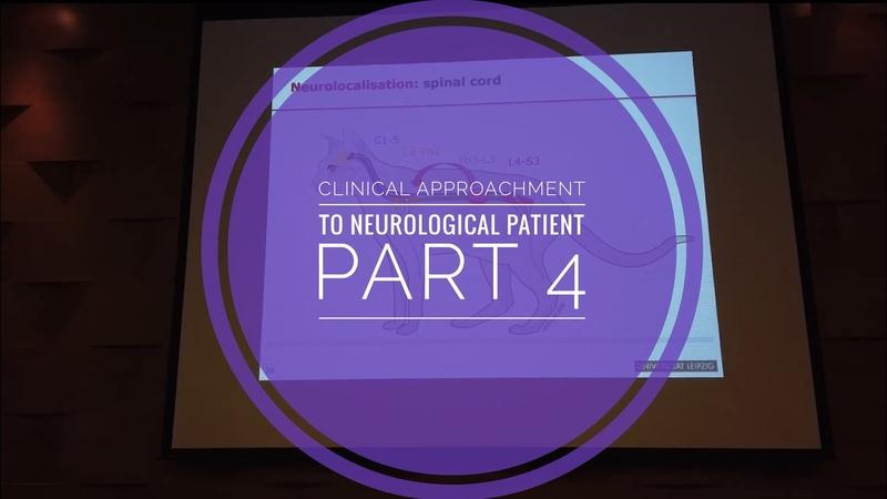 Клинический подход к неврологическому пациенту Часть 4 Clinical approachment to neurological patient Part 4