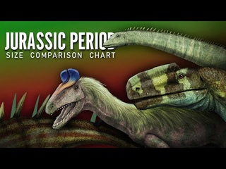 Jurassic Period. Dinosaurs and other animals size comparison
