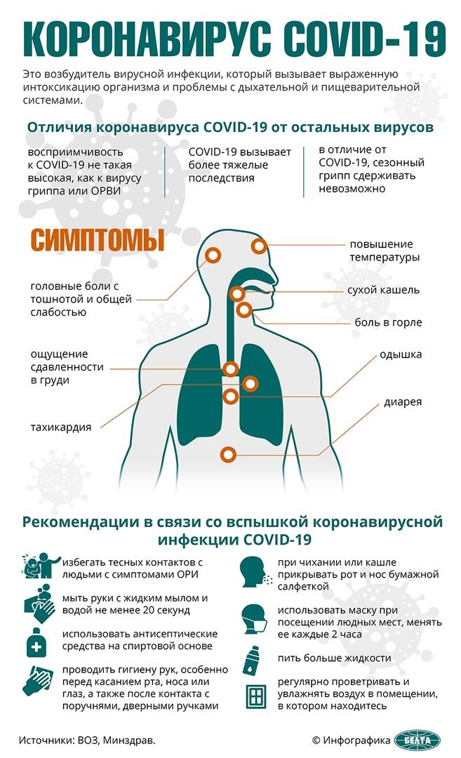 Лукашенко пояснил, почему в стране и школах не вводят карантин из-за коронавируса