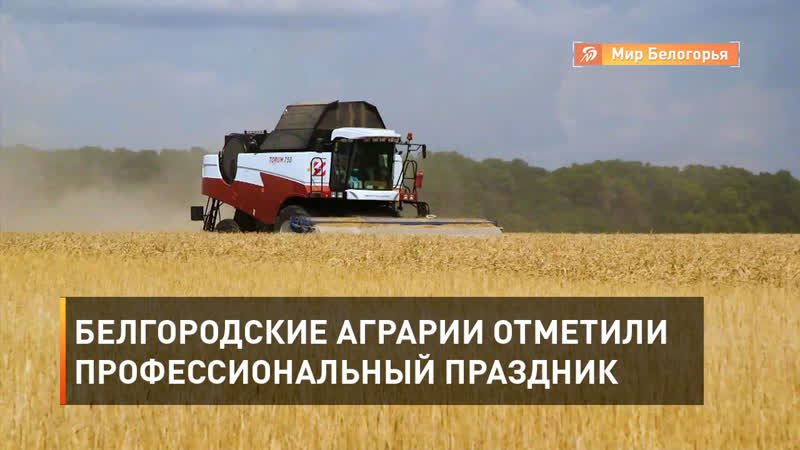 Белгородские аграрии отметили профессиональный праздник